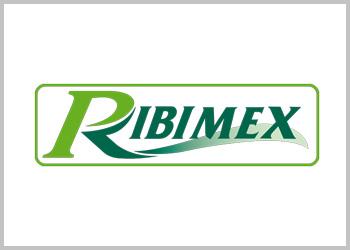 Machines de jardin Ribimex