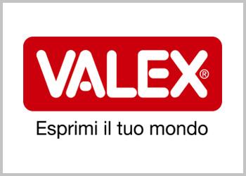 Motobineuse Valex